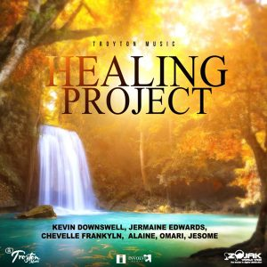 HEALING PROJECT - TROYTON MUSIC
